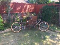 Viking tandem bike