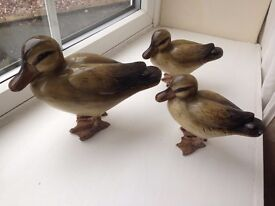 3 Little Ducks ceramic, all in perfect condition. £10 for set of 3