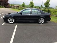 Bmw 530i M sport. New Mot Full Service History. Excellent condition