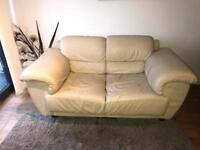 2 seater sofa & soft chair