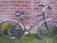 Raleigh Oxford mens cycle