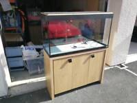 Fluval roma 200 fish tank aquarium
