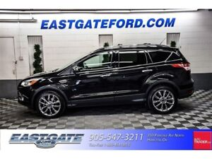 2015 Ford Escape SE with Chrome/Moonroof/Navigation