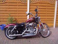 HARLEY-DAVIDSON XL1200 V (72) HARD CANDY RED CHOPPER STYLE