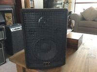 SR Technology Jam 150 plus acoustic amp or mini PA.