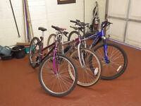 Job lot 3 Mountain bikes