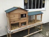 2 Bunny Rabbits complete with hutch & run