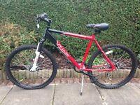 Boys Mountain Bike - Apollo Phaze