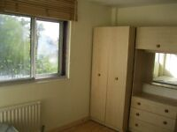 single room for rent £115 Chiswick