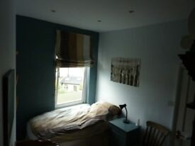 Generous single room in Victorian town house
