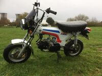 Honda ST copy, Skyteam Dax, ST 50, Monkey bike, 140cc upgrade