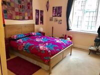 Extra Large & Spacious room in Finchley Road/Hampstead