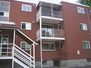 ALL-INCLUSIVE 3-BEDROOM APARTMENT - $1150/month Kitchener / Waterloo Kitchener Area image 8