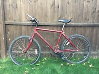 Man's Raleigh mountain bike
