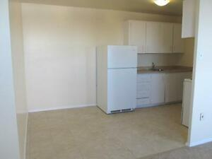 Special: 1 year FREE Parking with Stylish 2 Bedroom Suites! Kitchener / Waterloo Kitchener Area image 7