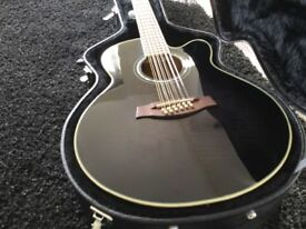 Ibanez AEL20112E 12 String Electro Acoustic Guitar Brandnew