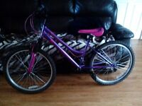 1 Girls Bike