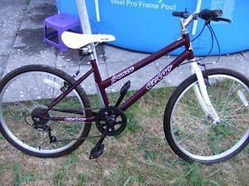 Girls bicycle aged 7-10 years 7 speed