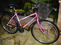ladies raleigh mountain bike with front basket