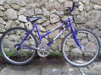Ladies/Teenager Girls Magna Omega Mountain Bike, purple/blue colour, good condition.