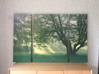 Triple tree canvas from Next