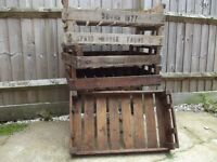 Vintage wooden fruit crates, ideal for kitchen or greenhouse.