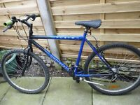 ADULT UNIVERSAL FUSION MOUNTAIN BIKE, GOOD CONDITION, BARGAIN £45, CAN DELIVER