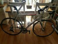 Canonndale CADD8 Size 56 Road Bicycle