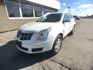 2012 Cadillac SRX Luxury Windsor Region Ontario image 10