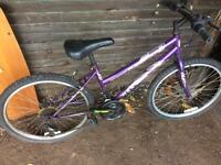Teens rio maxima 18 speed mountain bike
