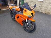 Kawasaki ZX-6R Ninja (ZX6R ZX 6R) in Neon Orange, Stunning, Faultless, Reliable Bike, 11 months MOT
