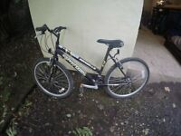 10 Bikes for sale together or individually.