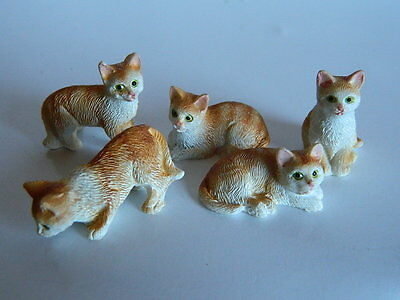 (G2-19) DOLLS HOUSE RESIN SET OF FIVE ASSORTED GINGER/WHITE CATS