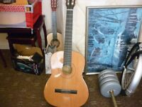 Burnswood clasic guitar