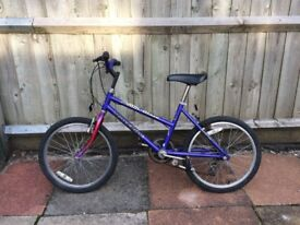 Girls Raleigh Roller Blaze bike for sale!