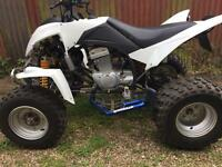 300cc road legal quad, immaculate!!