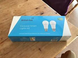 Hive exclusive smart lights kit.