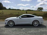Mustang 3.7 V6 LHD