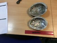 2 Large abalone shells imported from California