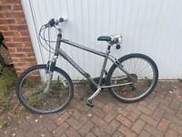 Free Raleigh Bike