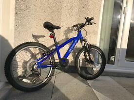 "Carrera 20"" boys mountain bike."