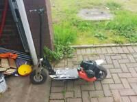 50cc kids petrol scooter
