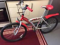 Mount bike