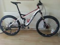Specialized Pitch Pro FSR 2010