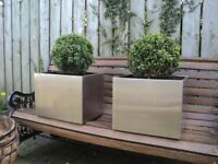 2 x large stainless steel planters