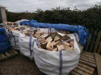 Seasoned hardwood and softwood logs