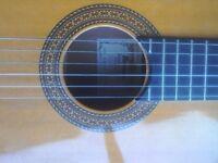 Accoustic classical guitar