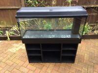 Fish tank/Aquarium Tropical fish, ALL YOU NEED START UP TANK