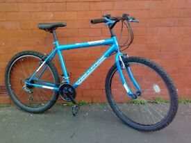Challenge mountain bike - good condition !