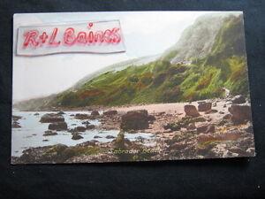 Labrador-Beach-Devon-Friths-Postcard